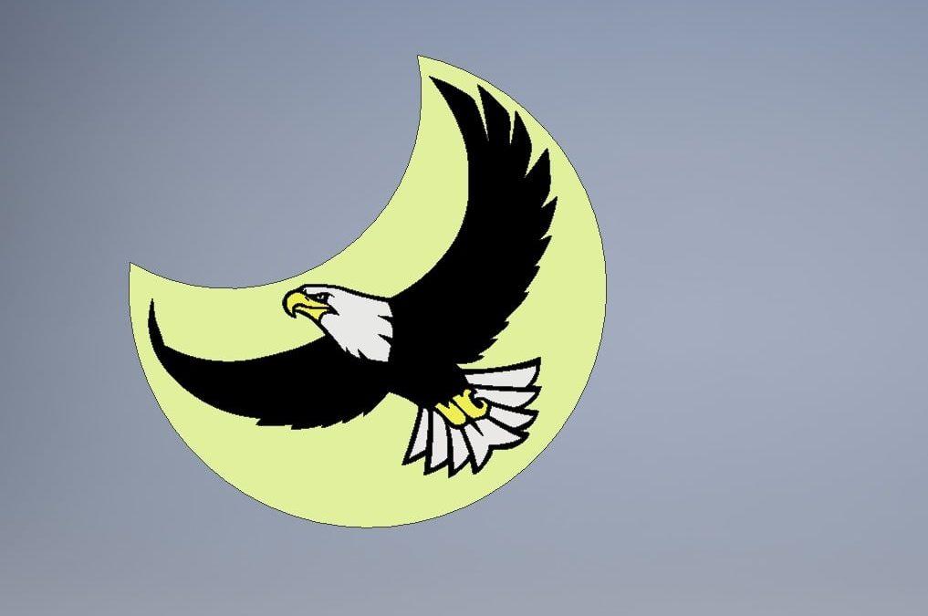 Aigle au clair de lune
